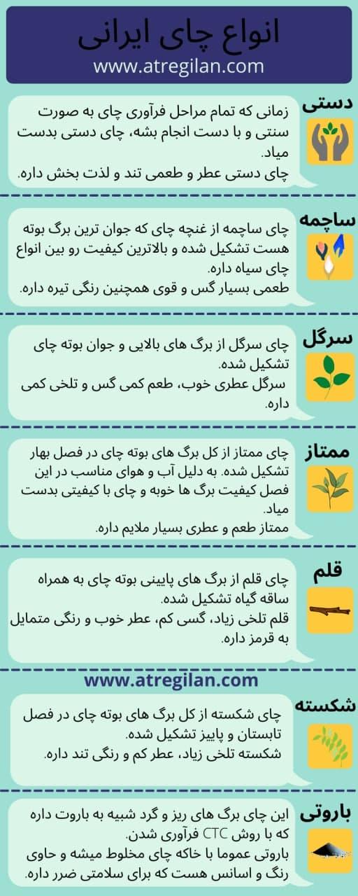 انواع چای ایرانی لاهیجان